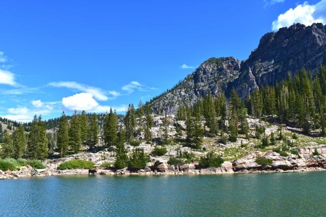Cerect Lake